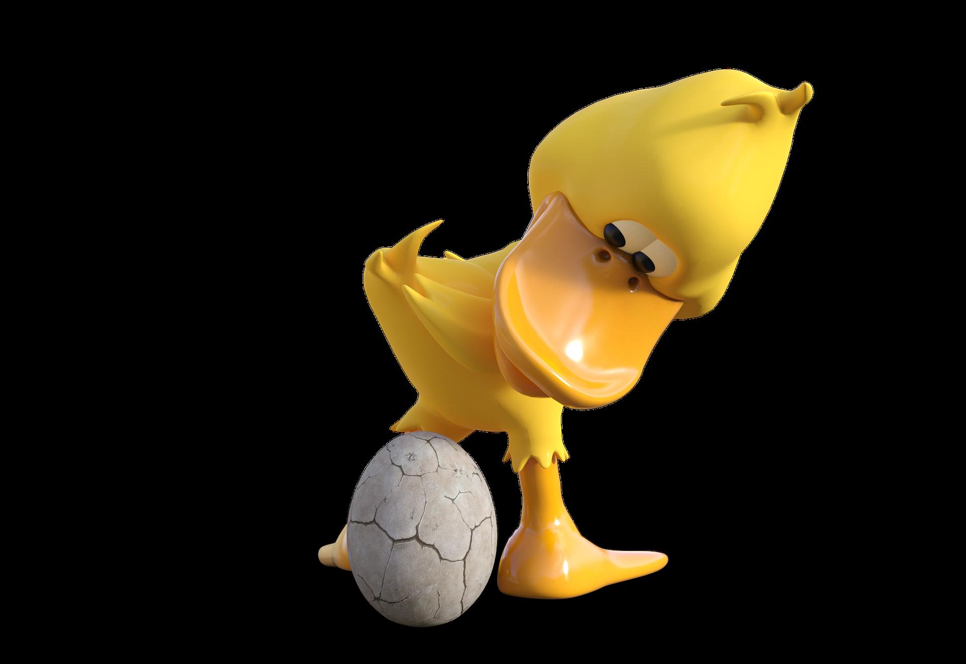 duck-2236908_1920